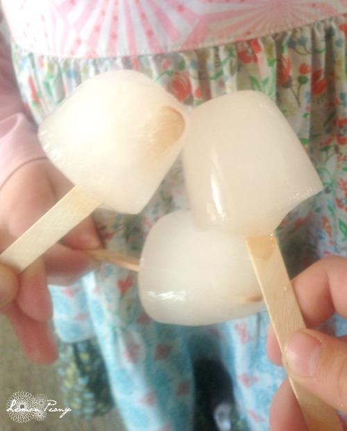 Homemade Ice Pops for Kids