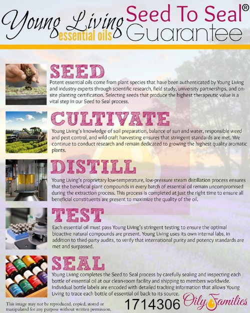 Young Living Growing Process