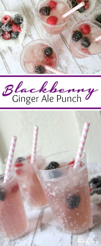 Sparkling Blackberry Ginger Ale Punch Recipe