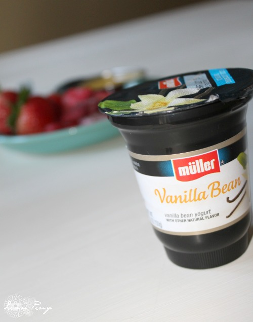 Vanilla Bean Yogurt