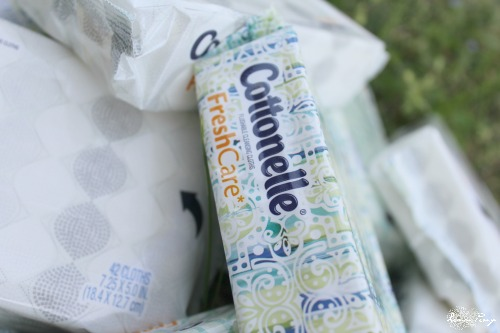 Cottonelle Fresh Care Cleansing Cloths