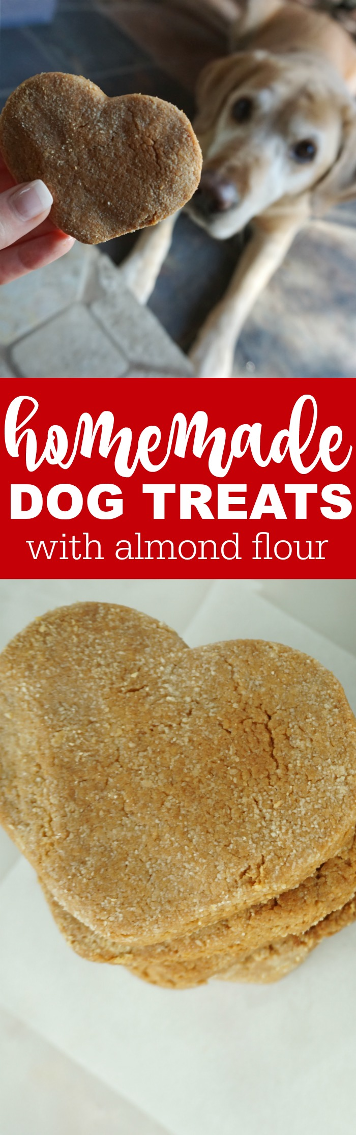 Homemade Dog Treats with Almond Flour! Healthy treats for your pups that they will love! DIY And Easy to make at home with only 5 Simple Ingredients!