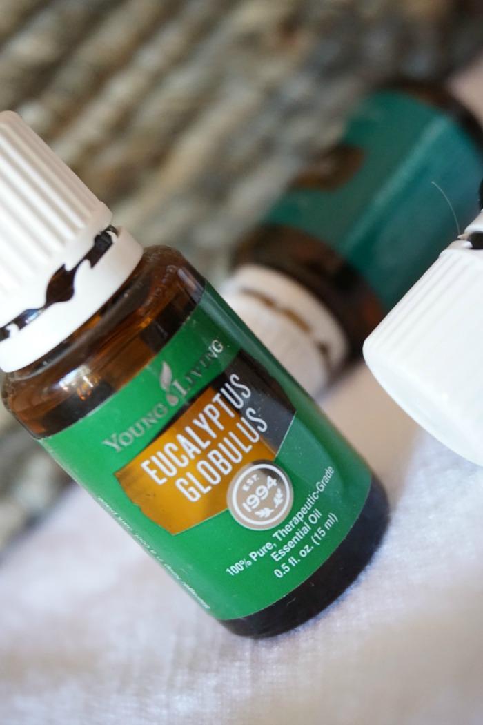 Eucalyptus Globulus Essential Oil