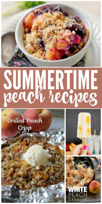 The BEST Summer Peach Recipes and Desserts! Epic and Amazing Recipe ideas with Peaches for a favorite summertime and holiday treats and Party snacks!