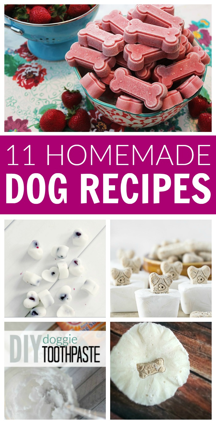 DIY Homemade Dog Recipes! Pamper your Puppy Pets with these simple and easy recipes for dog shampoo, snacks, treats, toys, freshener, odor remover, and more!