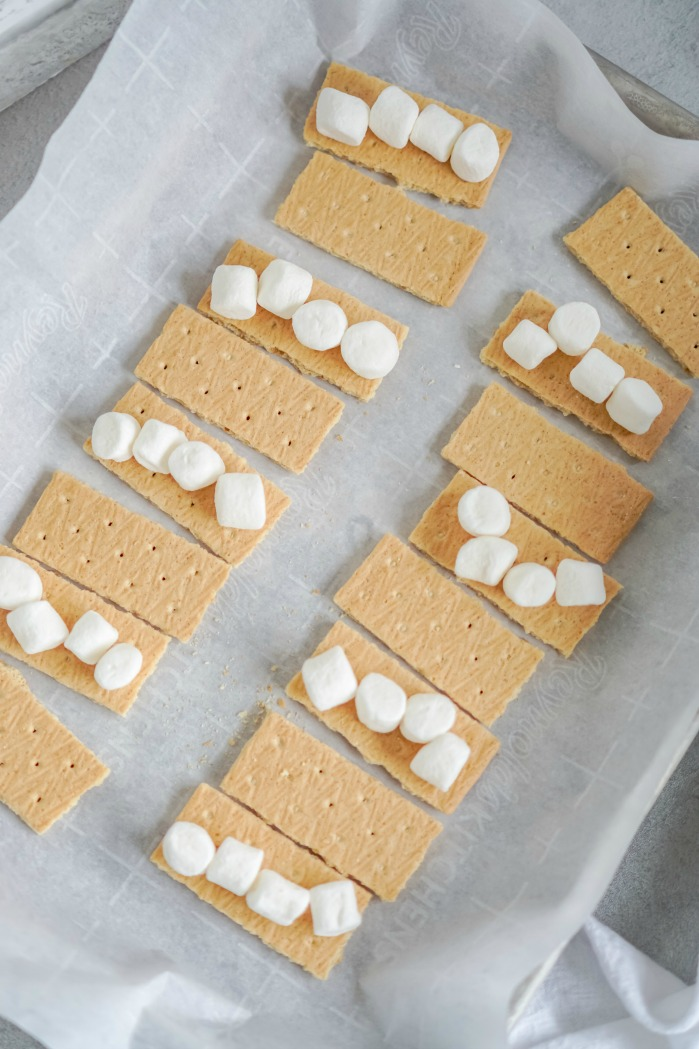 S'mores Bites on Tray